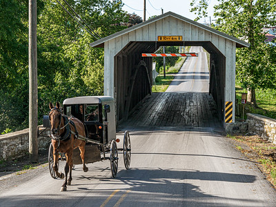 ©2020 Dennis A  Mook; All Rights Reserved; Lancaster County; Amish Buggy & Eshelman's Mill Bridge-001227