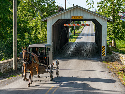 ©2020 Dennis A  Mook; All Rights Reserved; Lancaster County; Buggy Covered Bridge (2)-001227