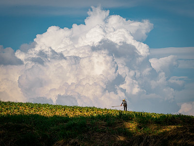 ©2020 Dennis A  Mook; All Rights Reserved; Lancaster County; Amish Farmer Hoeing (1)-001087