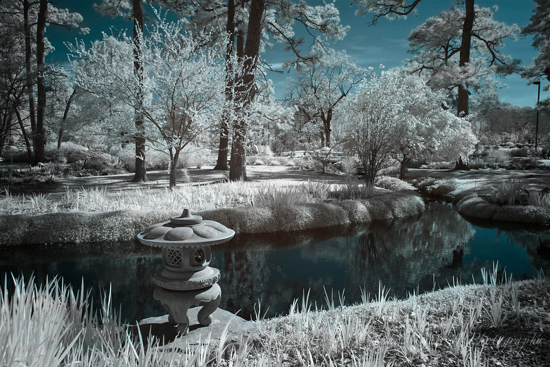 Tranquility In Infrared