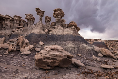 """Kingsmen"" - Petrified Forest, AZ"