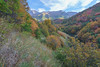Dry Canyon Colors 2