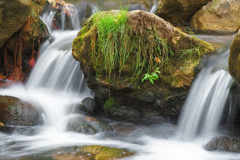 Mossy Twin Falls