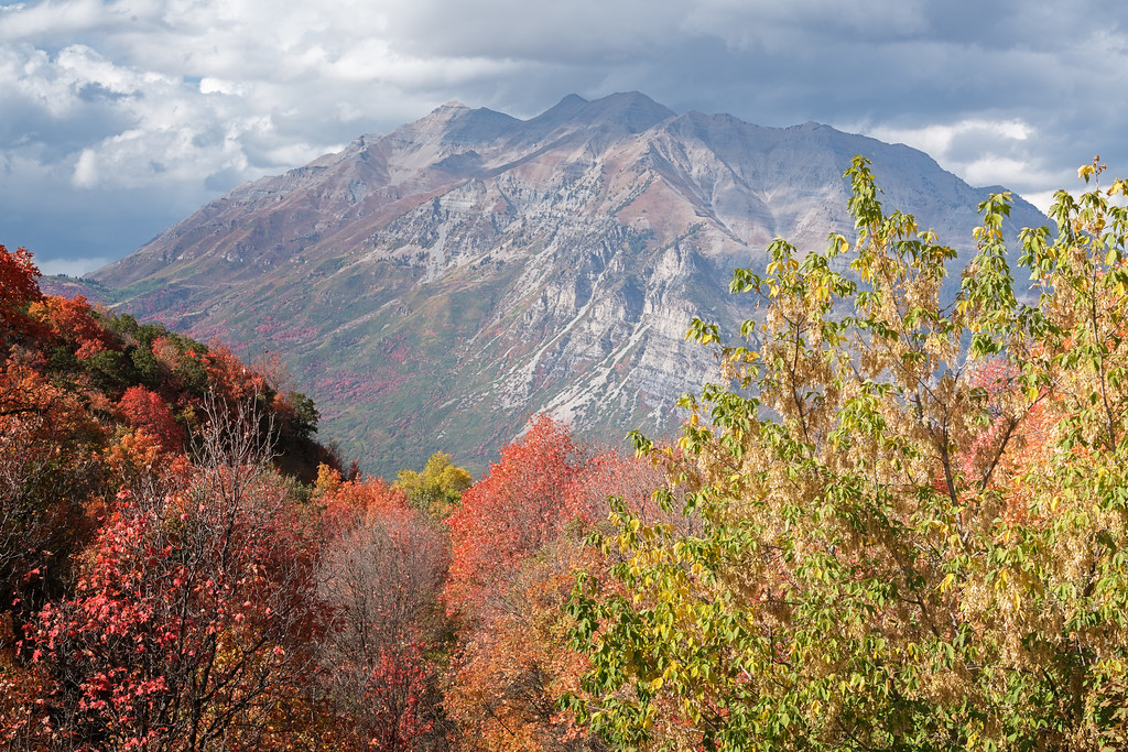 Timpanogos in the Fall 04