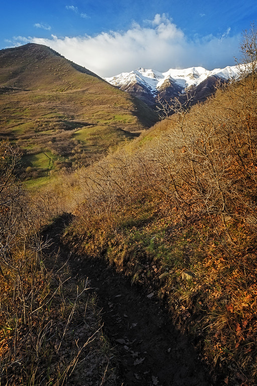 Dry Canyon Offshoot Trail