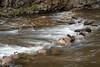 Upper Provo Falls 10