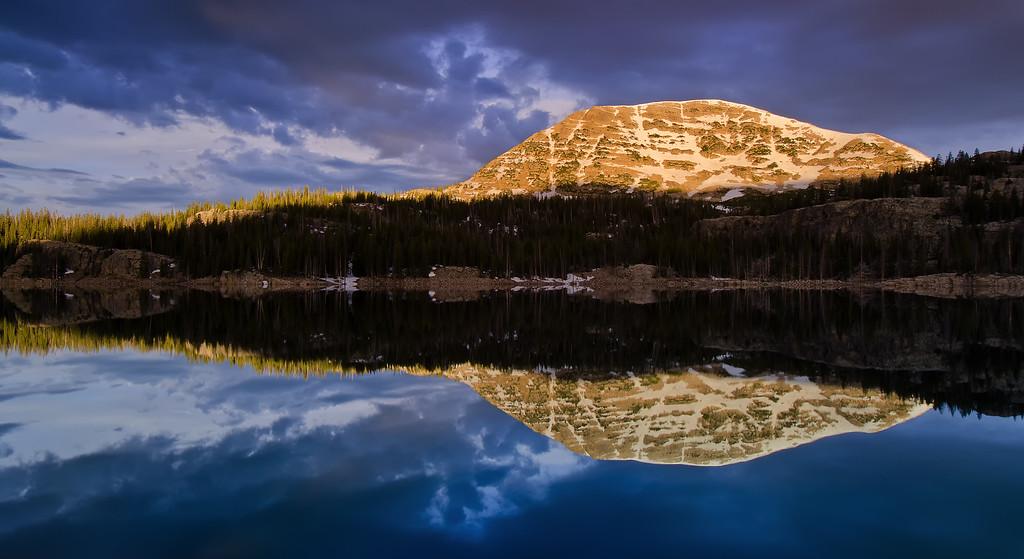 Golden Rimlight Reflected