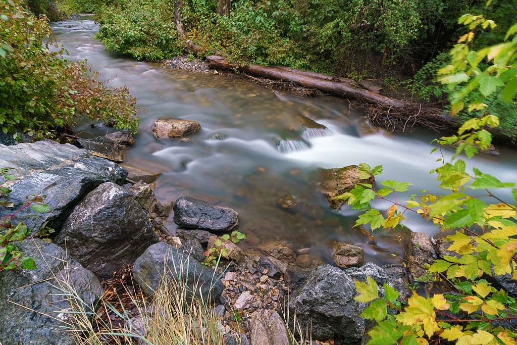 American Fork River in the Rain 03
