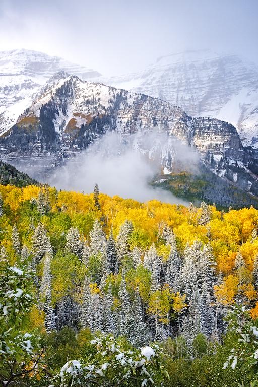 Majestic Autumn Mountain