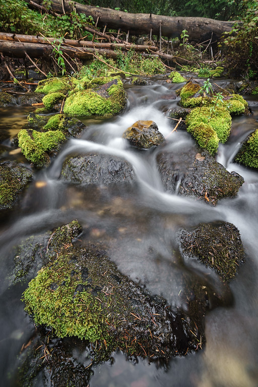 Mossy Autumn River 4