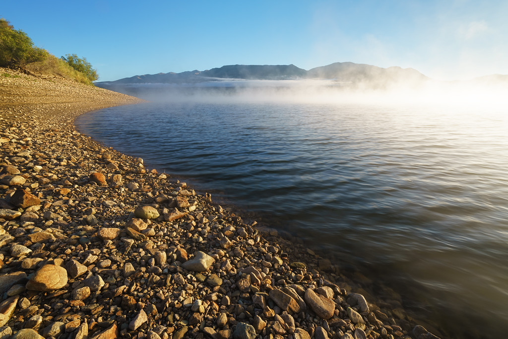 Pineview Morning Shoreline