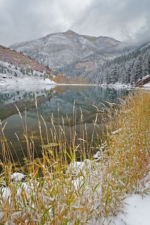 Tibblefork Winter Morning