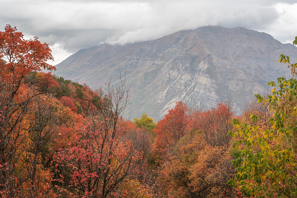 Timpanogos in the Fall 07