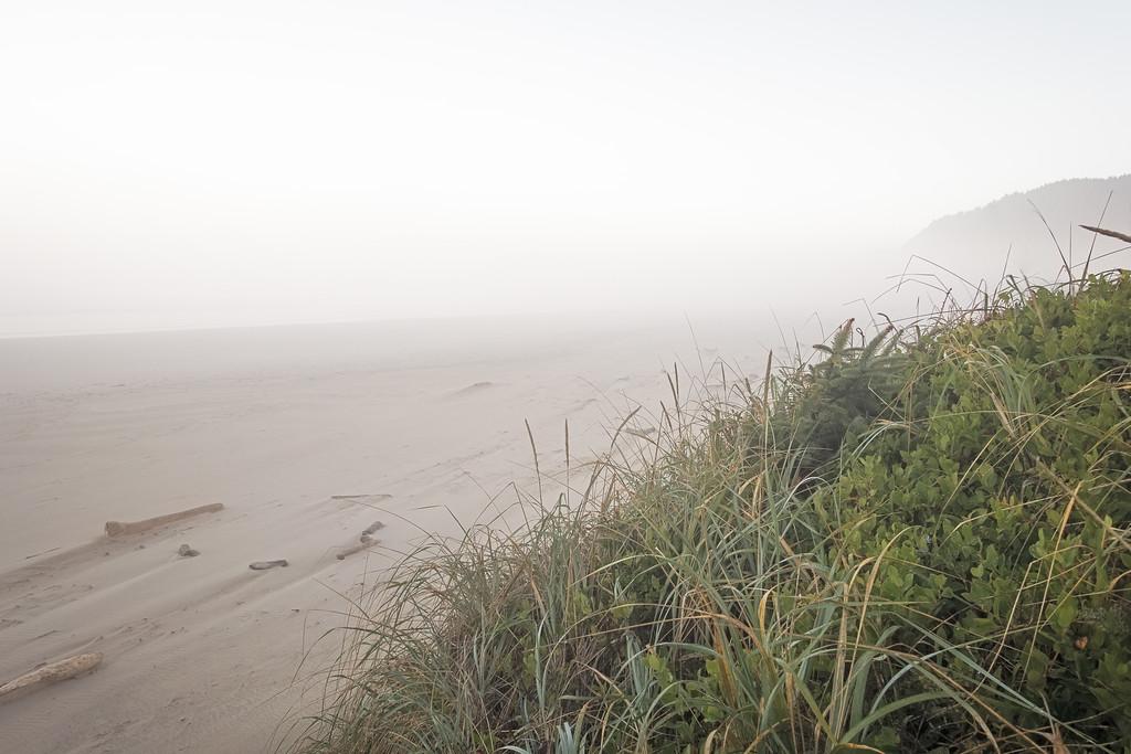Misty Morning on the Beach