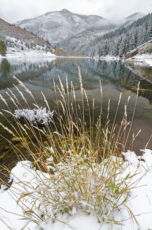 Winter at Tibblefork