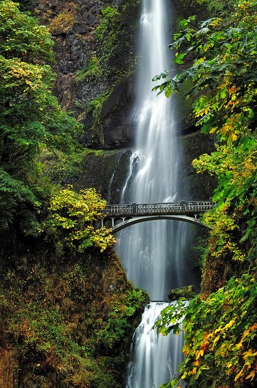 Multnomah Falls in the Fall