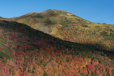 Autumn Along Pine Canyon Road 01