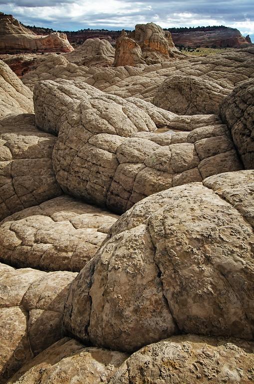 Brain Rocks