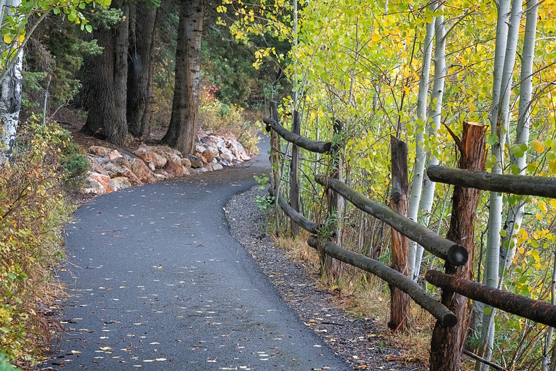 Pathway at Payson Lakes