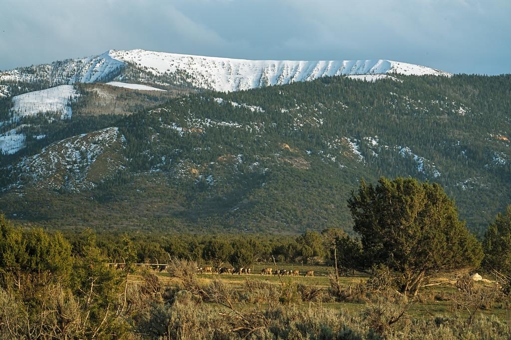 Horshoe Mountain 2