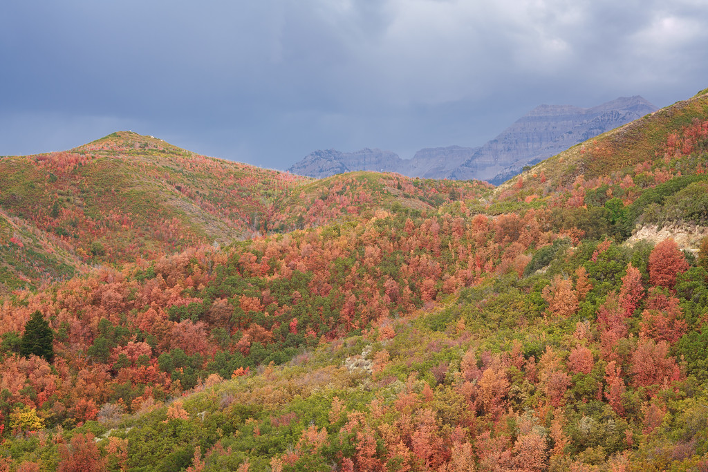 Stormy Autumn Mountain View