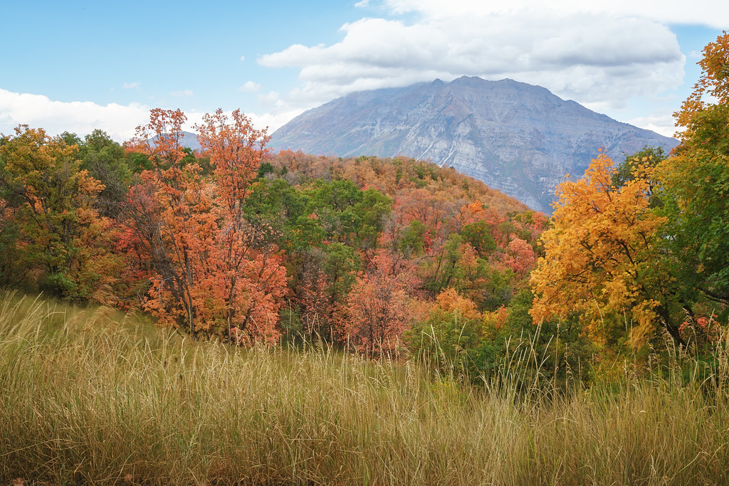 Timpanogos in the Fall 01