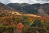 Nebo Loop Autumn Vista