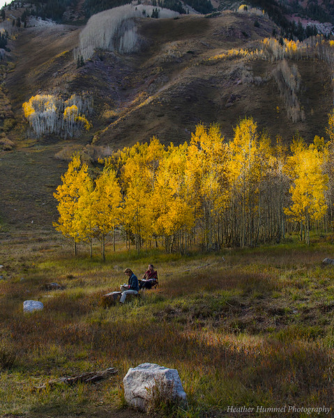 Artists in the Aspens