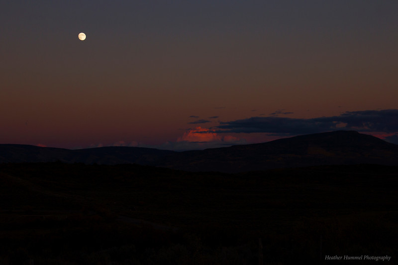 Moonrise Over Sunset