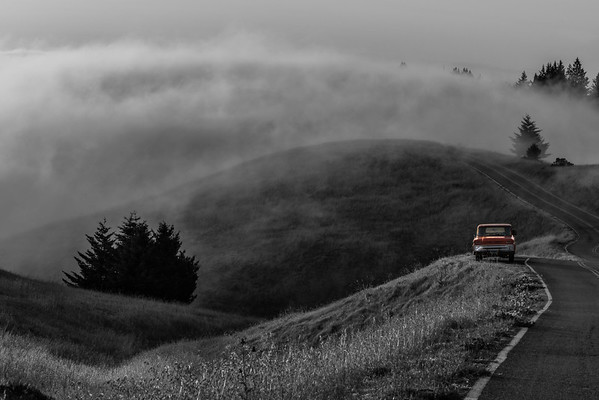 Griffin's Truck in Mount Tamalpais II