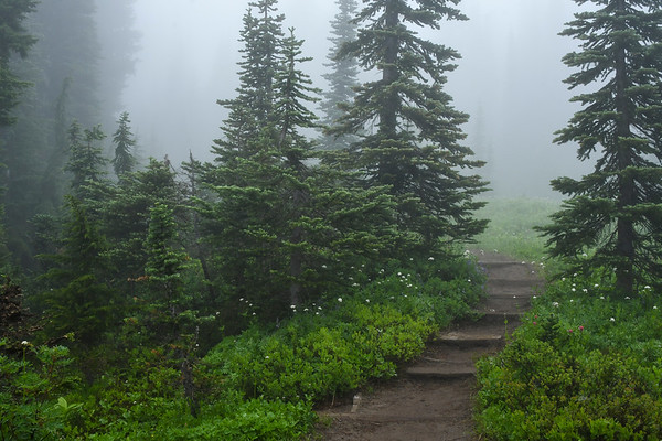 Faerie Land at Mt. Rainier I