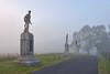 Branch Ave Fog