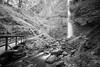 Lower Latourell Falls