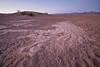 Mesquite Sand Dunes Twilight