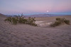 Mesquite Sand Dunes Moonrise
