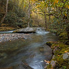 Bradley Fork in Great Smoky Mountains NP