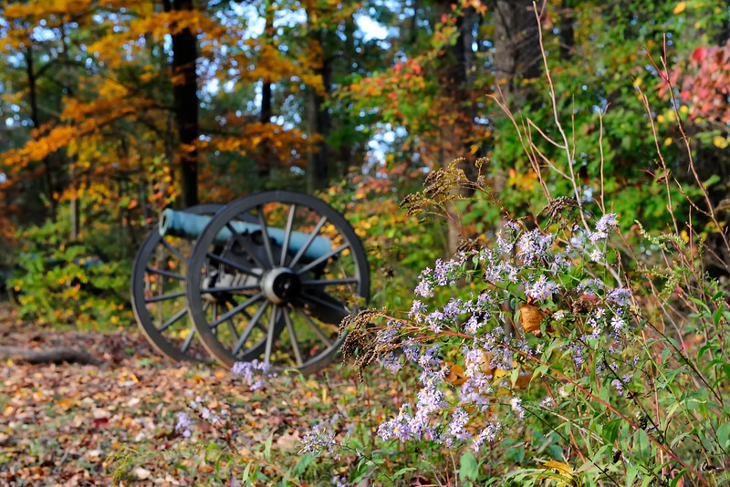 Poague's Howitzers<br /> Army of Northern Virginia, Hills Corps, Pender's Division<br /> Confederate Avenue