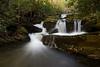 Lynn Camp Cascades