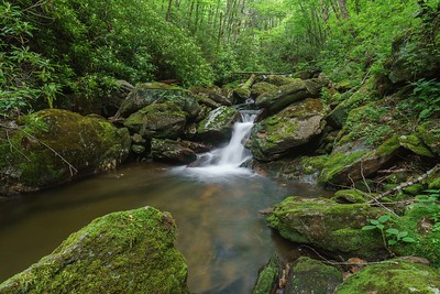 Haywood Gap Stream