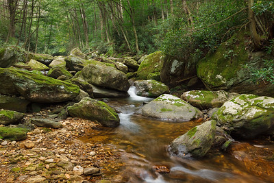 Middle Prong of the West Fork Pigeon River, Haywood County NC
