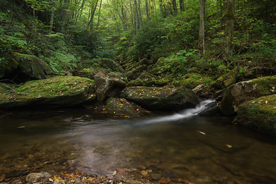 Haywood Gap Stream, a Middle Prong tributary