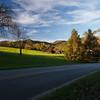 Near Traphill NC