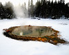 Shield Spring, Upper Geyser Basin