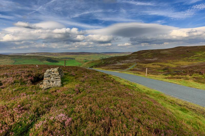 High Lane Landscape