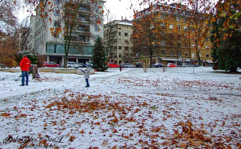 Early snowfall before Autumn's glory dies ... Geneva, Switzerland