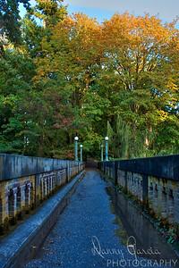 Bridge to Autumn