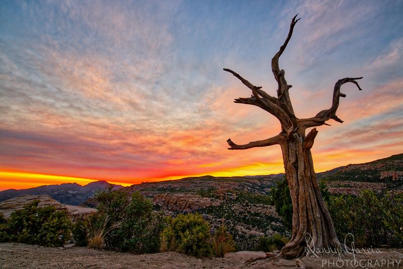 Sunset over Arizona