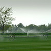 Irrigating the sod fields, Cutchogue, NY