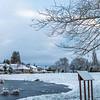 Winter at Bradmore Pond
