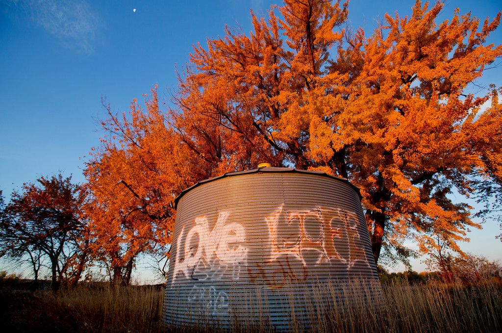 Fall folliage frames a grafitti covered grain silo in  Ballantine, Montana.